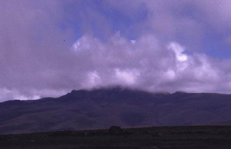 ecard 98509-landschap