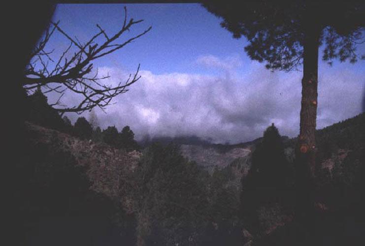 ecard 1010-berglandschap-met-wolk