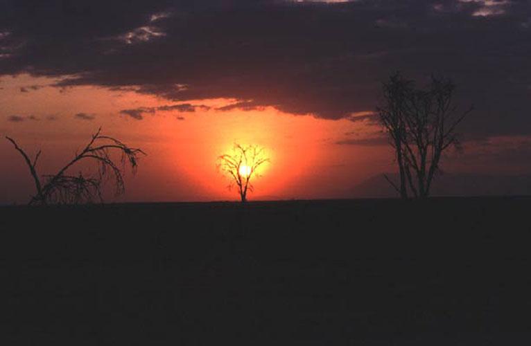 ecard 1745-zonsondergang-2