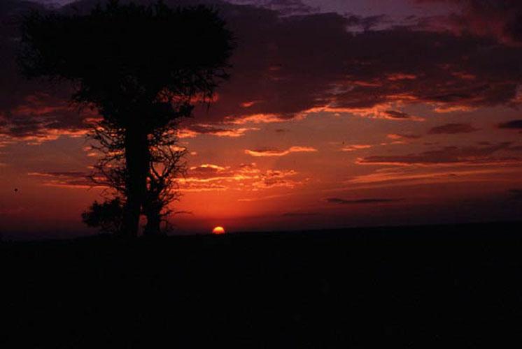 ecard 1746-zonsondergang-3